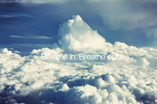 Breath in. Breath out.
