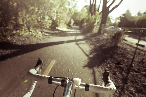 Cycle: IV