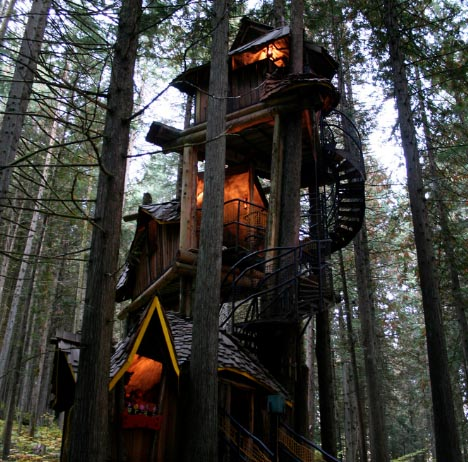 Fantastic Forest Tree House
