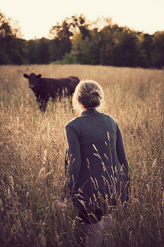 Girl and the cow