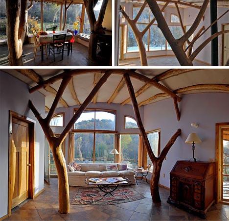 Organic Modern Tree House