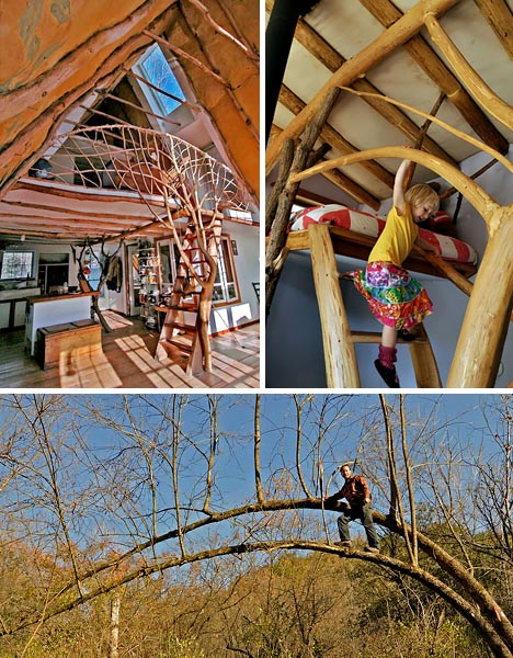 Organic Whole Tree Home Construction