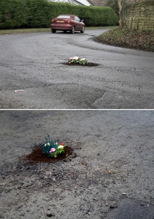 Pothole Gardens