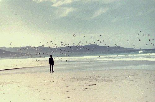 Praia de Traba