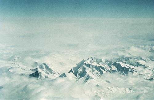 The Alphs