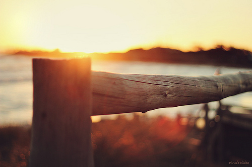 Wood Fence at Sunset